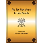The Ten Non-virtues & Their Results, A Convenient Outline for Quick Reference eBook