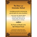 Direct and Unmistaken Method: Practice and Benefits of the 8 Mahayana Precepts  eBook