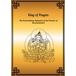 King of Prayers - The Extraordinary Aspiration of the Practice of Samantabhadra - ereader eBook
