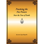 Practicing the Five Powers Near the Time of Death PDF
