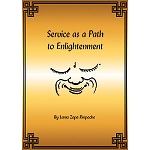 Service as a Path to Enlightenment eBook
