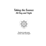 Taking the Essence All Day and Night eBook