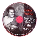Bringing Dharma to the West DVD