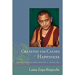Creating the Causes of Happiness eBook