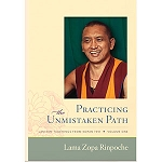 Practicing the Unmistaken Path eBook