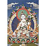 White Tara Card