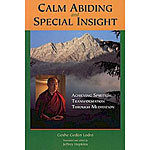 Calm Abiding and Special Insight