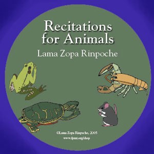 Recitations for Animals - MP3 Download