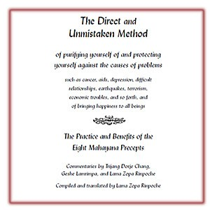 Direct and Unmistaken Method: Practice and Benefits of the 8 Mahayana Precepts PDF