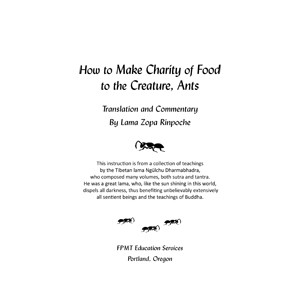 Charity to Ants eBook