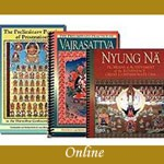 Discovering Buddhism Module Fourteen - Special Integration Practices - Online