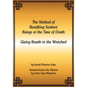 Giving Breath to the Wretched PDF
