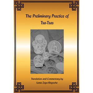 The Preliminary Practice of TSA -TSAS PDF