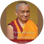 Remembering Impermanence and Understanding What is True Dharma - DVD