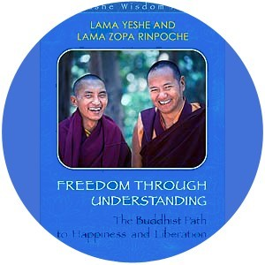 Freedom Through Understanding DVD