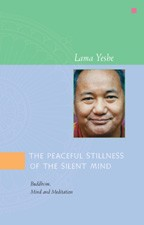 The Peaceful Stillness of the Silent Mind (Free)
