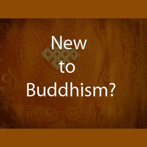 New to Buddhism?
