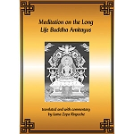 Amitayus: Meditation on the Long Life Buddha Amitayus PDF