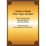 Practices to Benefit Pretas, Nagas and Spirits eBook & PDF