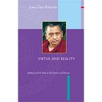 Virtue and Reality eBook & PDF