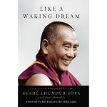 Like a Waking Dream eBook