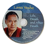 Life, Death and After Death DVD