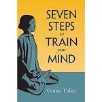 Seven Steps to Train Your Mind eBook