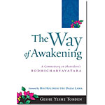 The Way of Awakening