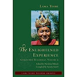 The Enlightened Experience: Volume 2 eBook