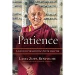 Patience - A Guide to Shantideva's Sixth Chapter eBook