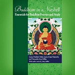 Buddhism in a Nutshell PDF, an FPMT Introductory Course (for centers and study groups)