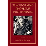 Transforming Problems into Happiness eBook