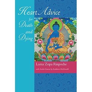 Heart Advice for Death and Dying eBook