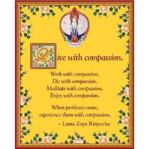 Live with Compassion Card