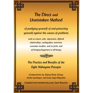 The Direct and Unmistaken Method: Practice and Benefits of the 8 Mahayana Precepts PDF