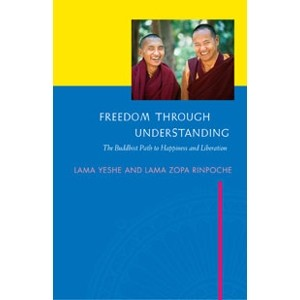 Freedom Through Understanding eBook & PDF