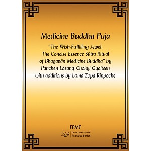 Medicine Buddha - The Wish Fulfilling Jewel PDF