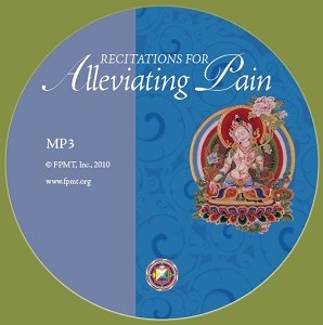 Recitations for Alleviating Pain - MP3 Download