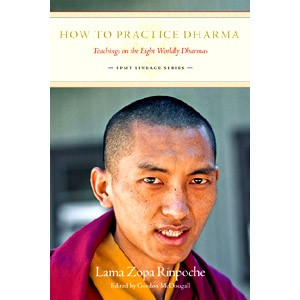 How to Practice Dharma  - Hard Copy