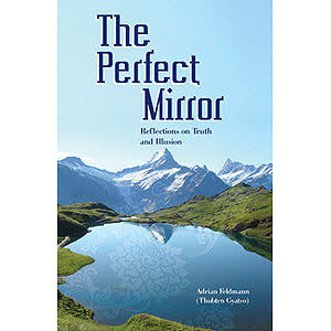 The Perfect Mirror eBook & PDF
