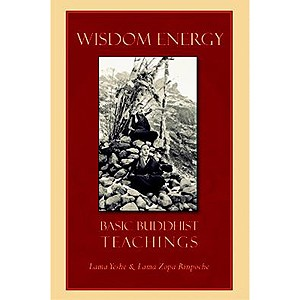 Wisdom Energy eBook