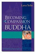 Becoming the Compassion Buddha eBook